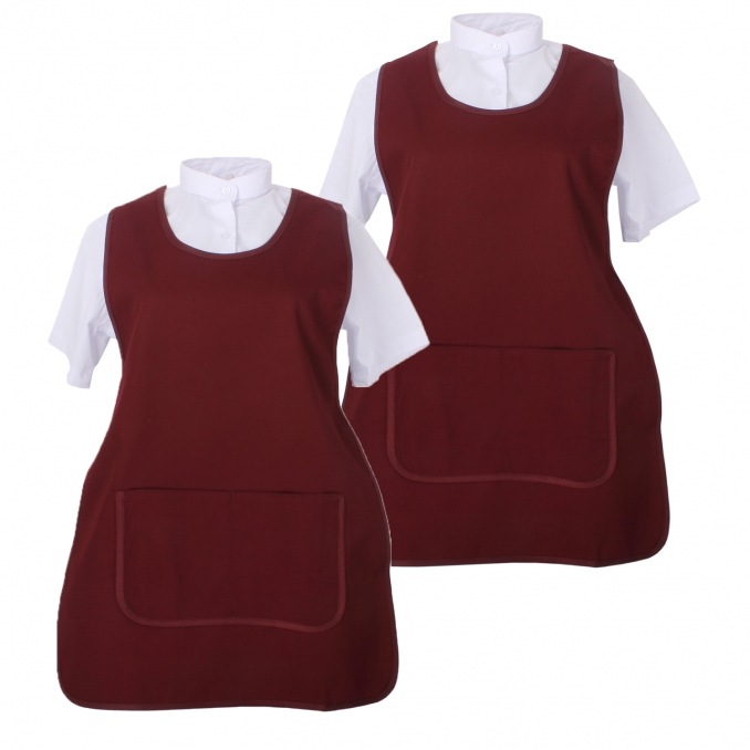 Set of 2 Pcs - APRON CLEANING WORK UNIFORM CLINIC HOSPITAL CLEANING VETERINARY SANITATION HOSTELRY - Ref.868