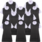 Set of 10 Pcs -  APRON CLEANING WORK UNIFORM CLINIC HOSPITAL CLEANING VETERINARY SANITATION HOSTELRY - Ref.868